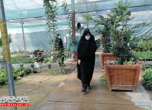 بازدید دکتر صالحی از گلخانه شهرداری مبارکه